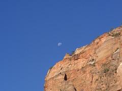 P7140090 (Vicinum) Tags: zion landscapes