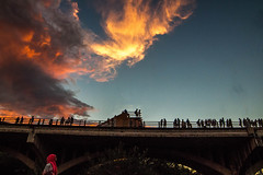 South Congress Ave (Onceafewmonths) Tags: bats austin texas aus tx 512 congress ave avenue 2017 july 787 sunset clouds people bridge nocturnal sundown