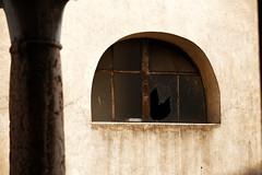 IMG_5883 (S. Hemiolia) Tags: zeiss olympia sonnar 180 180mm f28 manualfocus sirmione garda gardalake lagodigarda canon 6d windows window finestre finestra