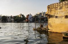 Los niños de Udaipur (Nebelkuss) Tags: india udaipur lago lake pichola niños children fujixt1 fujinonxf23f14 salto jump momentos instantes moment instant momentthieve ladrondemomentos instantsthieve