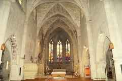DSC00730 (Carmelo DG) Tags: etain eglises meuse grandest lorraine gothique vitraux sculture orgues nef chapelle piéta ligierrichier