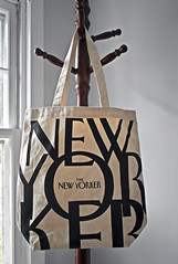 The New Yorker (☁☂It's Raining, It's Pouring☂☁) Tags: odc bag newyorker white black hanging clothestree wood inthebreezeway window light wall