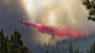 11x14 Wiliard Fire Drop