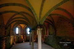 Bretagne ( photopade (Nikonist)) Tags: beauport nikond300 nikon abbaye couleurs côtesdarmor affinityphoto afsdxvrzoomnikkor1685mmf3556ged architecture arche arcade apple imac