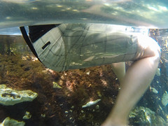 In Case You've Ever Wondered (Jerry Bowley) Tags: me mangrove allinclusive river rivieramaya ecopark xelha jerry float