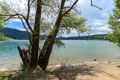 La spiaggia del Lago Grande (Madelung11) Tags: lago avigliana torino provinciaditorino spiaggia beach sky lake canon piemonte