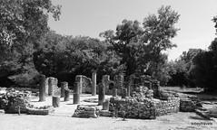 0014 Baptistry, Butrint (5) (tobeytravels) Tags: albania butrint buthrotum illyrian baptistry