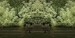 Together (Steven & Joey Thompson) Tags: together landscape bench river