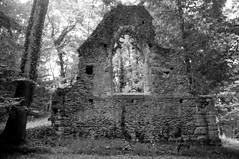 Ruines de l'église gothique - Désert de Retz (Philippe_28) Tags: 78 chambourcy désertderetz yvelines iledefrance parc fabrique folie follie park