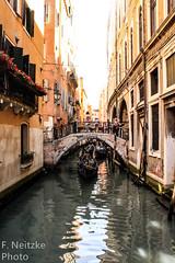 14 Venice