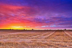 After the harvest - Après la moisson (olivier_kassel) Tags: paysage landscape sunset coucherdesoleil ciel sky nuages clouds colours hdr tistheseason