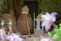 S.MasséMaisonduMajordome©TourismeHautLimousin-10 (tourisme_hautlimousin) Tags: jardin gîte vacances hautlimousin patrimoine location fleurs botanique tourolim