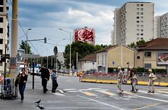 Fleur de ville (CaroDiario) Tags: rue street photoderue streetphotography passants paysageurbain urbanlandscape trottoir bâtiments ciel nuages murpeint rose fresquemurale mural contraste panasonicdcgh5 olympusm1240mmf28 explorationurbaine urbanexploration
