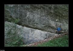 Suivez la ligne - Bas de Falaise de la Reculée de Norvaux (francky25) Tags: bas de falaise la reculée norvaux karst franchecomté doubs