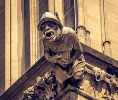 Gargoyle at Cologne Cathedral in Germany (mary_hulett) Tags: cologne rivercruise gargoyle travel colognecathedral 2017 viking rhineriver cathedralofstpeter europe waterspouts church