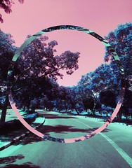 reclusive. (// P*) Tags: blue pink colors edit القاهرة مصر cairo egypt trees road iphonephotography