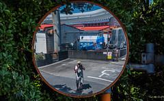 2017 - Japan - Hyūgashi - Mimitsu - Walk (Ted's photos - For Me & You) Tags: 2017 cropped hyuga japan nikon nikond750 nikonfx tedmcgrath tedsphotos vignetting mirror photographer selfie foliage shadow