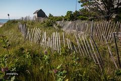 Twisty Fence (Alex Chilli) Tags: cape cod massachusetts east coast