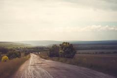 Ульяновская область (KIR1984 photos) Tags: green nature ульяновск дорога деревня road vilage туман fog природа