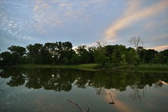 Nature's reach (marensr) Tags: sunset sky pond water reflection silhouette west ridge nature preserve trees clouds alto cumulus