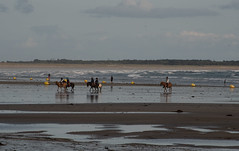 L'apprentissage des petitous... (claude dequidt) Tags: plage poneys enfants erdeven équitation