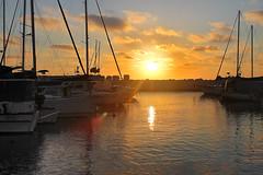 Orange & Gold (Photogioco) Tags: jaffa old port fishermen seaview mediterraneansea mediterraneo mare sunsets gold orange sunkiss barche boats lifestyle lensflare