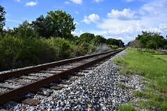Project 365 - 7/20/2017 - 201/365 (cathy.scola) Tags: project365 odc tracks traintracks leadinglines