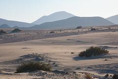 Dunescape (paul indigo) Tags: fuerteventura paulindigo desert dunes footprints landscape mountains plants space