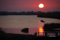 Serenamente (stefano.chiarato) Tags: tramonto sunset acqua reflections water sky cielo sole sun vallidipesca serenamente veneto italy estate sera pentaxart pentax pentaxlife