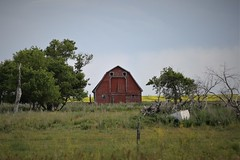 Abandoned Barn (Mick Loyd) Tags: june30m20017wwmelita barn abandoned manitoba southwest