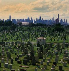 NY Skyline 346 (stevensiegel260) Tags: cavalrycemetery queens newyork manhattanskyline newyorkskyline cemetery