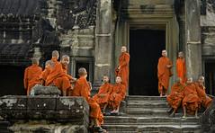 Novices At Angkor Wat (doug-craig) Tags: cambodia cambodia20170130dng asia angkorwat culture monks buddhism buddhist stock nikon d7000 journalism photojournalism dougcraigphotography infinitexposure autofocus thelook