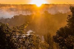 Fireball (*Capture the Moment*) Tags: 2016 brasilien brazil bäume fog fozdeiguazu goldenhour goldenestunde iguacu jungle landschaften mist sonne sonnenuntergang sonye18200mmoss sonynex7 sun sunset trees urwald wasserfälle wassernebel waterfalls wetter