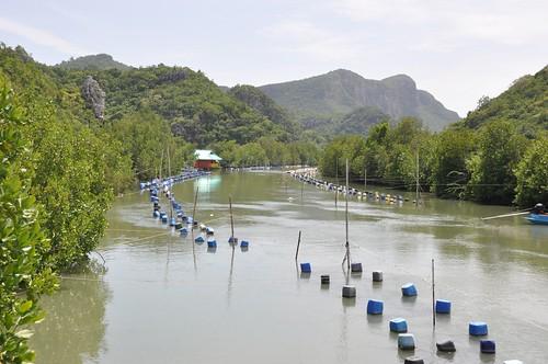 parc national sam roi yot - thailande 36