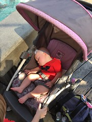 """Dani Asleep at Disney's California Adventure • <a style=""""font-size:0.8em;"""" href=""""http://www.flickr.com/photos/109120354@N07/35596664520/"""" target=""""_blank"""">View on Flickr</a>"""
