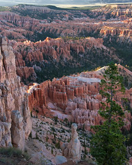 sunset - Bryce Canyon - 7-01-10  11 (Tucapel) Tags: bryce brycecanyon nationalpark utah evening eveninglight dusk