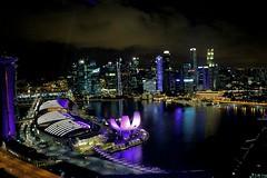 Views from the eye (madhav8007) Tags: singapore cityskyline night