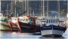Barcos pesqueiros (o.dirce) Tags: barcos barcospesqueiros jurujuba niterói odirce