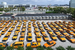 I got the famous view of the taxicabs from the peoplemover at the Miami airport. (Tim Kiser) Tags: 2017 20170415 americanairlines april april2017 dadecounty dadecountyflorida florida floridalandscape img1152 mia miamover miami miamiflorida miamiinternationalairport miamiairport miamiairportpeoplemover miamilandscape miamisuburbanarea miamisuburbs miamitaxicabs miamidade miamidadecounty miamidadecountyflorida aircraft airplanes airport airportcabs airportlandscape airporttaxicabs airporttaxis cabdrivers cabs cars landscape orangeyellow parkedcars parking parkinglot parkingspaces southflorida southernflorida suburbanmiami taxicabparkinglot taxicabs taxidrivers taxiparking taxiparkinglot taxis unincorporatedmiamidadecounty view viewfromatrain yellowcabs yelloworange