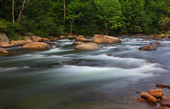 Cherry River (ashockenberry) Tags: river cherry nature landscape west virginia flow current waterfall rapids