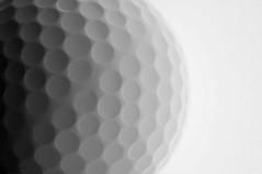 Golf Ball (disgruntledbaker1) Tags: macromondays texture white golf closeup ball disgruntledbaker