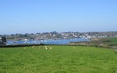 Fjords bretons (Sur mon chemin, j'ai rencontré...) Tags: finistère bretagne campagne nature abers flickrsbest wonderfulworld