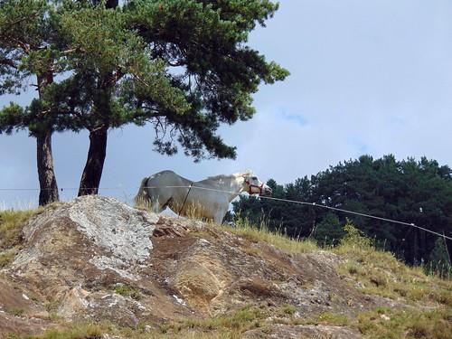 Sornàs (Andorra)
