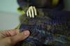 (sigerrik) Tags: 2017 process felting dolgonosik beetle