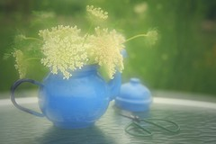 in softness (s@ssyl@ssy) Tags: blue soft delicate doubleexposure incamera queenanneslace weeds teapot vintage