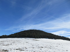 Hill with evergreens, snow fields, Middle Atlas near Azrou, Morocco (Paul McClure DC) Tags: middleatlas morocco jan2017 almaghrib ifrane azrou mountains winter scenery snow northafrica