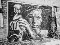 street-art-1 (tom#2) Tags: blackwhite street art grafitty
