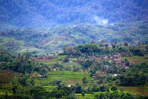 Community in Gunung Halimun-Salak National Park