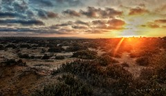 Desert Sunsets ... (Hazem Hafez) Tags: desert sun sunset sand green weeds grass horizon clouds sky