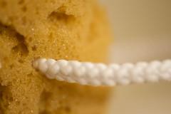 Texture- Macro Mondays (Karon Elliott Edleson) Tags: loofah sponge closeup macromondays bath bathtime spa luxurious tamron60mm relaxation